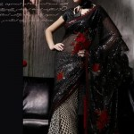 Pakistani Sexiest Models 2011 Saree Dress Designs