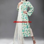Latest-Pakistani-Summer-Lawn-Collection-2011-(AllPakistaniNews.Com)-18