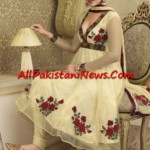 Pakistani-Fashion-2011-(AllPakistaniNews.Com)-17