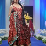 bridal-couture-week-2011-(AllPakistaniNews.Com)-5