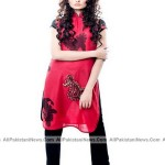 Latest-Sumer-Lawn-Fashion-2012-(AllPakistaniNews.Com)-30