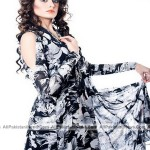 Latest-Sumer-Lawn-Fashion-2012-(AllPakistaniNews.Com)-31