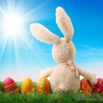 Happy-Easter-2012-Colorful-Cards-(AllPakistaniNews.Com)-15