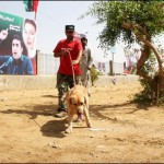 PPP Completes Preparations for Karachi Rally Today