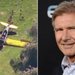 Harrison Ford Battered but OK After LA Plane Crash